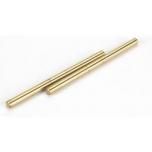 Hinge Pins 4x66 mm TiNi (2 pcs)